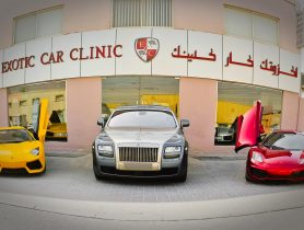 Exotic Car Clinic