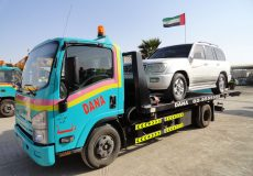 Dana Auto Towing Services